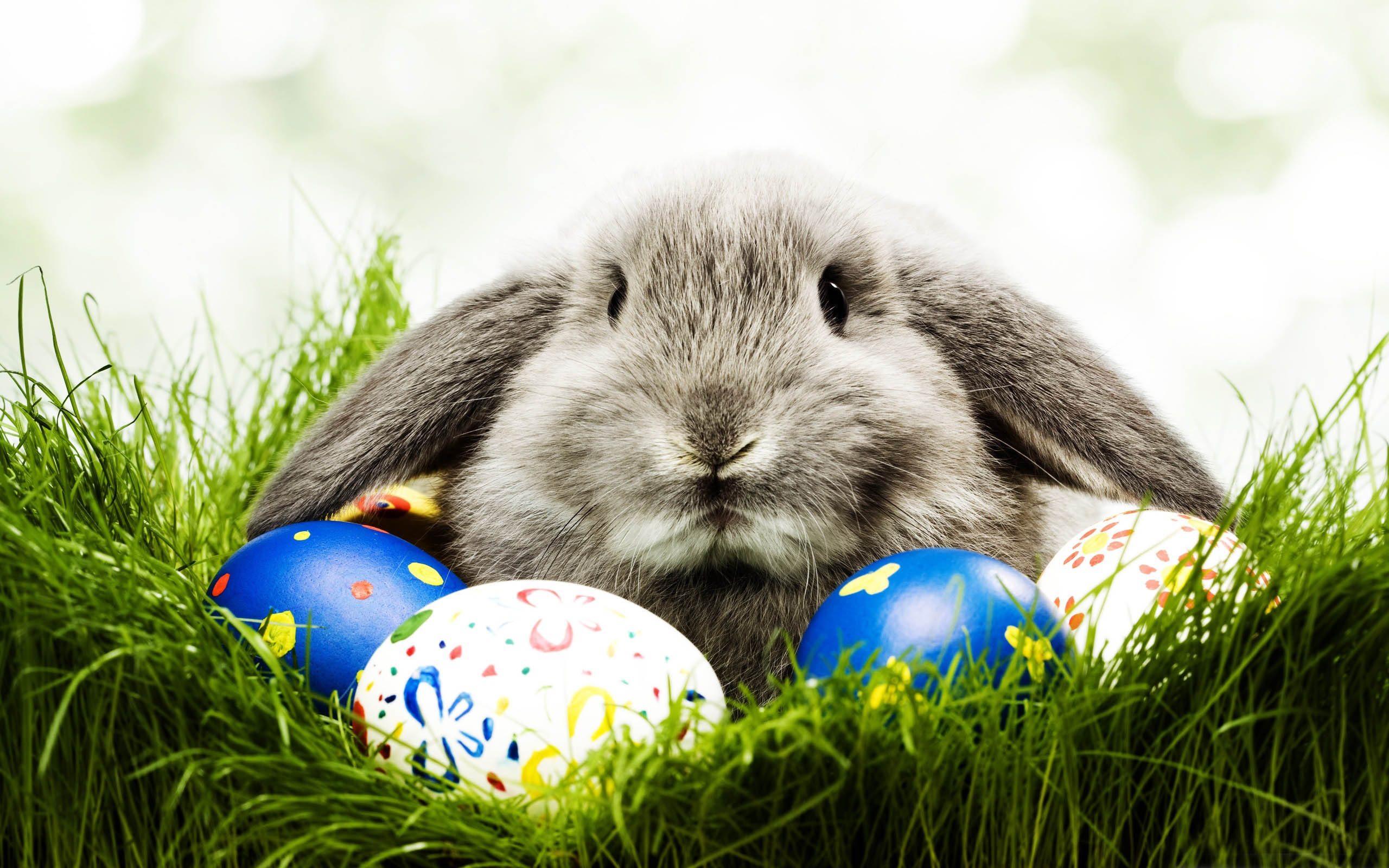 Annual Murrayhill Easter Egg Hunt- Saturday, March 26th ...